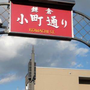 鎌倉・小町通り の 猫カフェ【 ワクワク cafe 】で癒されまくりです❤