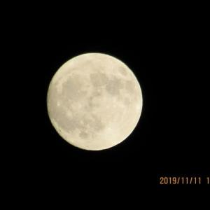 今夜のお月様は 殆ど真ん丸~♪