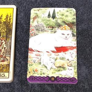 大アルカナの物語 3女帝