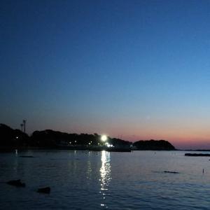 夏の夜を彩る花火。