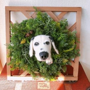 クリスマスアレンジに