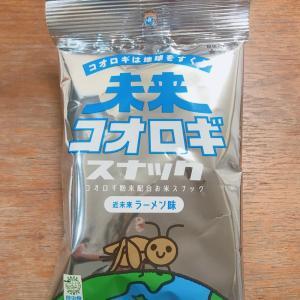 昆虫食を初体験!!