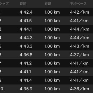 BU走31km