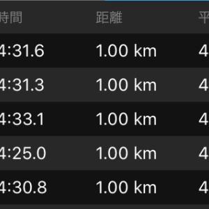 BU走20km