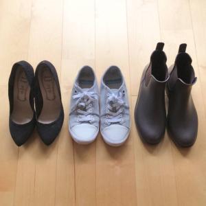 夏の靴3つと、少なくなったきっかけと、猫
