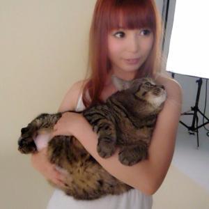 【芸能】中川翔子の愛猫「マミタス」急死 太り過ぎを指摘する声も