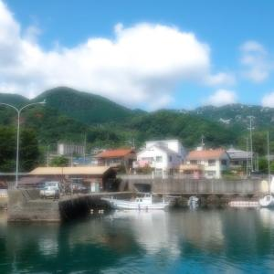 2020年夏 小さな漁港diary