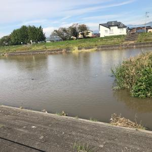 2年前のブログで河川敷の工事