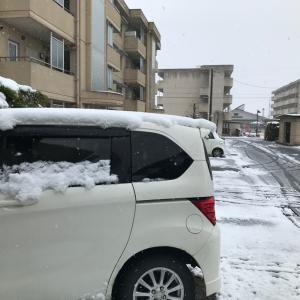 なごり雪かな!
