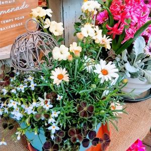 嬉しい出会いとお花のパワー