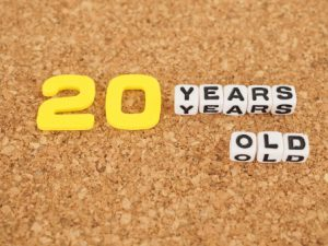 【祝!投資歴丸20年】投資成績はどうだった?