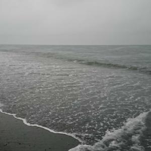 28回目釣行。久しぶり~(*^3^)/~鯖祭り