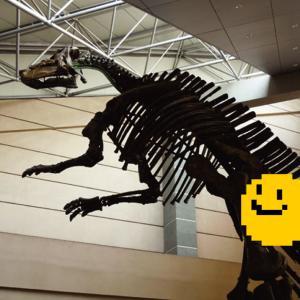 暴龙【bào lóng】〜山東省でティラノサウルス?