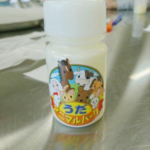 うだアニマルパーク(バター作り)