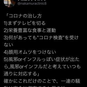 日本人は、コロナを正しく恐れるべきです!!!