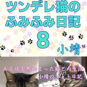 ツンデレ猫のふみふみ日記8(2019年9月22日発売)