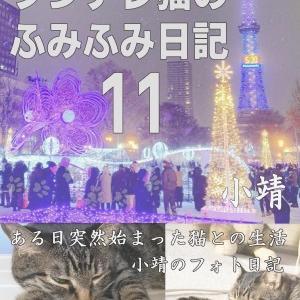 ツンデレ猫のふみふみ日記11(2019年12月22日発売)
