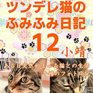 ツンデレ猫のふみふみ日記12(2020年1月22日発売)