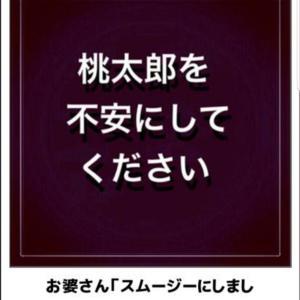 ⛩️【超訳 桃太郎⑪✨】