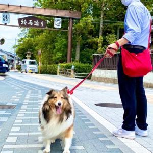 あずき…滋賀県へ