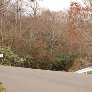 名瀑 幕滝を訪ねて
