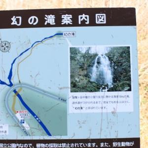 ゴールドライン開通で滝観