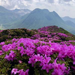 お花見登山 平治岳