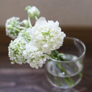 お花を飾ってお家時間を楽しもう♪
