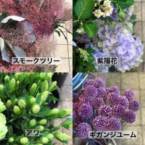 今の季節のお花屋さんのお花のご紹介♪