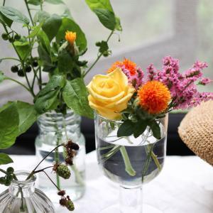 日光不足はお花にも影響してます