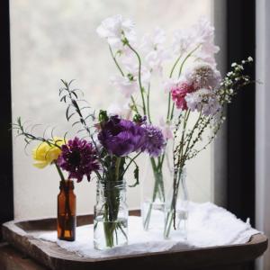 春のお花に会いにお花屋さんに行ってみよう!