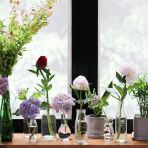 ★大好きな紫陽花と芍薬の季節♪