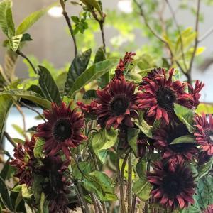 ★お花屋さんの季節の花★立秋♪