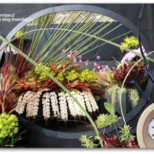 世界らん展2019~花と緑の祭典~ その1