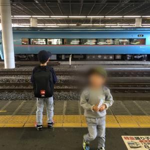 小田原駅にてロマンスカーMSEと踊り子と大雄山線。
