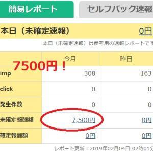 2019年1月分のネット収入 A8.netは0円!