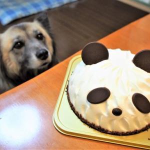誕生日ケーキ!の巻