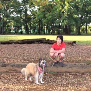 水子貝塚公園でお散歩!の巻