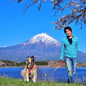 一星と見た富士山!の巻