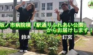 【ABIES】健康体操第6弾!「指先運動」