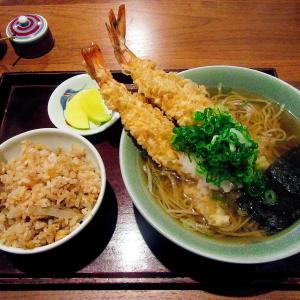 和歌山の蕎麦屋と言えばここ!信濃庵の名物てんぷらそばと炊き込みごはんを紹介!