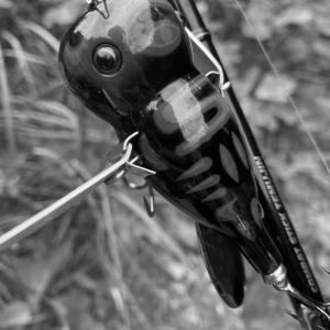 □■□ 逃した魚はデカい! □■□