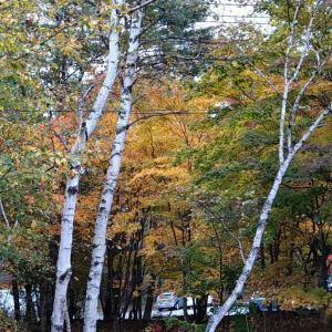 浅間は黃葉と紅葉