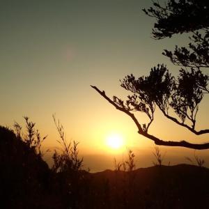 青ヶ島の風景♪(青ヶ島滞在記⑥)