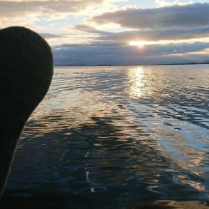 今朝の釣行・18