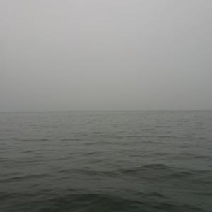 今朝の釣行・19