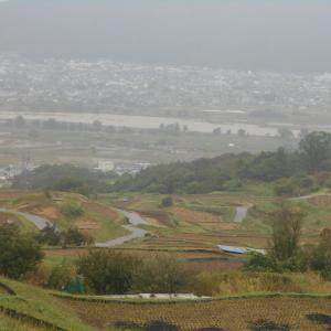 雨の棚田と千曲川
