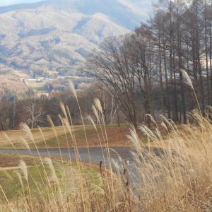豪雪地帯の飯山と望郷の湯