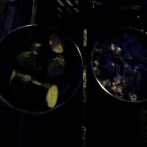 炎の宴と酒に呑まれる夜