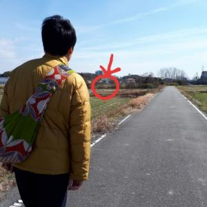 小春日和の休日の過ごし方(ぷっこ家ダイジェスト版)。